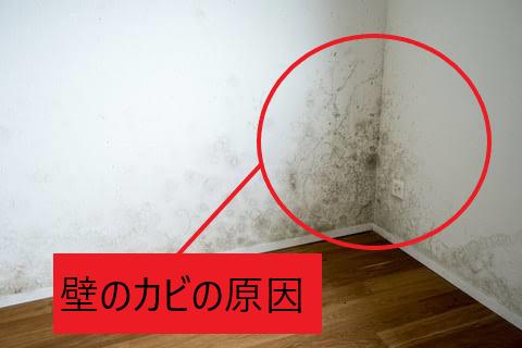 壁のカビの原因